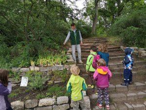 Kräuterführung für Kitakinder im Bürgerpark